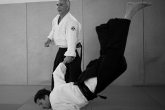 Formation_aikido_avril_2018-1001819