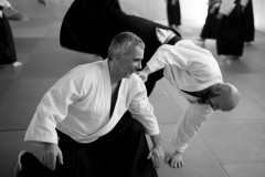 Formation_aikido_avril_2018-1001906